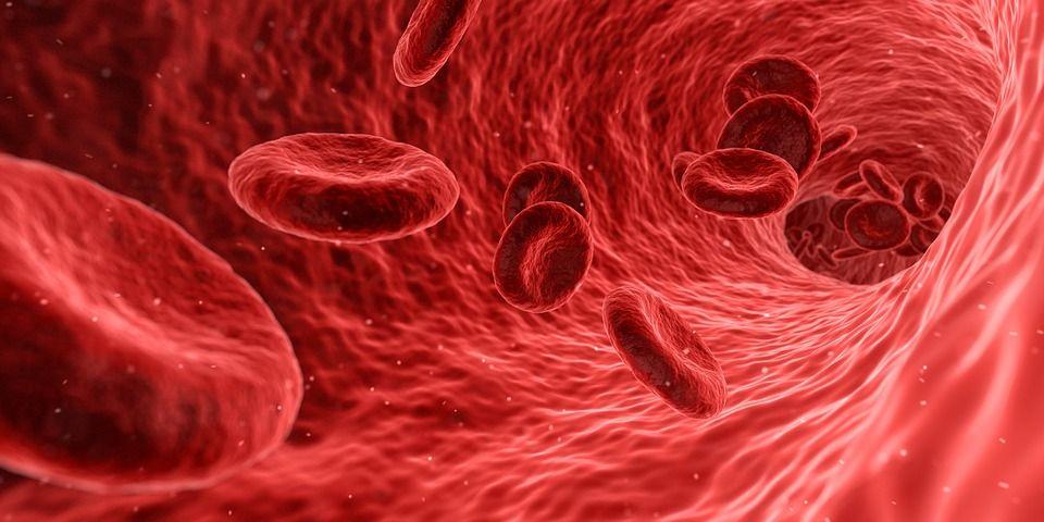 Hemofilia, boala genetică a tulburărilor de coagulare. Care este forma cea mai frecventă