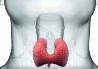 6 SEMNE care indică probleme ale glandei TIROIDE