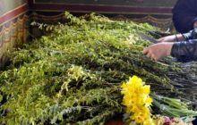 Ce trebuie să faci în duminica Floriilor pentru prosperitate și liniște sufletească. Tradiții și obiceiuri