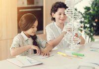 Cum promovăm copiii supradotați. 5 faze ale învățării autonome