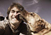 La ce BOLI GRAVE te expui, dacă îi permiți animalului tău de companie să te lingă pe față. Unele au potențial LETAL
