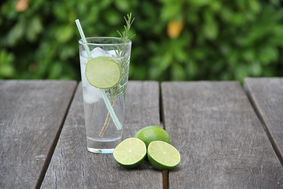 De la remediu din ierburi, la o băutură foarte apreciată. Fascinanta poveste a ginului tonic