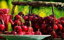 Sunt fructele vedetă ale sezonului! De ce este bine să mâncăm cireșe