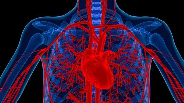 Trei alimente care previn formarea cheagurilor de sânge și mențin inima sănătoasă