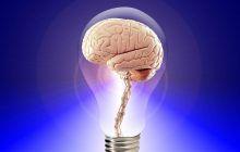 Principala HRANĂ a creierului tău. Combustibilul de bază fără de care nu funcționează corect