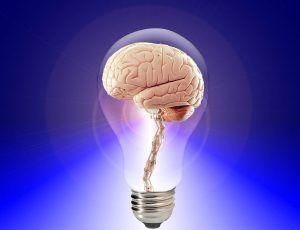 Principala HRANA a creierului tau. Combustibilul de baza fara de care nu funcționeaza corect