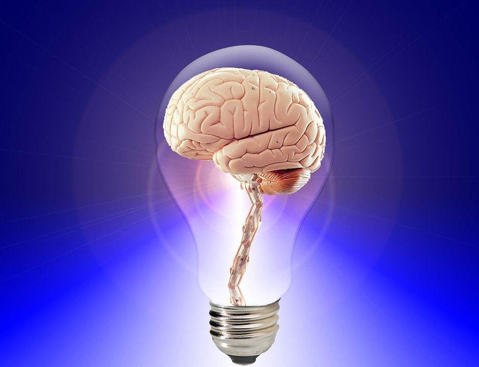 Un neurolog american a dezvăluit ce alimente fac adevărate minuni pentru creier. Sunt ieftine și ușor de găsit