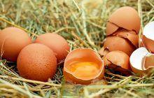 Cum recunoaștem un ou proaspăt? Metodă infailibilă de a ști exact vechimea oului