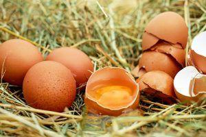 Cum recunoastem un ou proaspat? Metoda infailibila de a sti exact vechimea oului