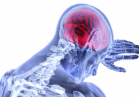 Viermele intestinal care îți poate invada creierul. Ajunge în corp din cauza acestui aliment