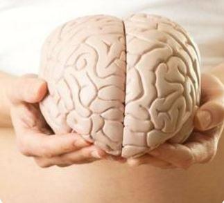 Alimente miraculoase pentru creier! Regenerează oasele, revigorează vederea și îmbunătățesc MEMORIA cu 70%