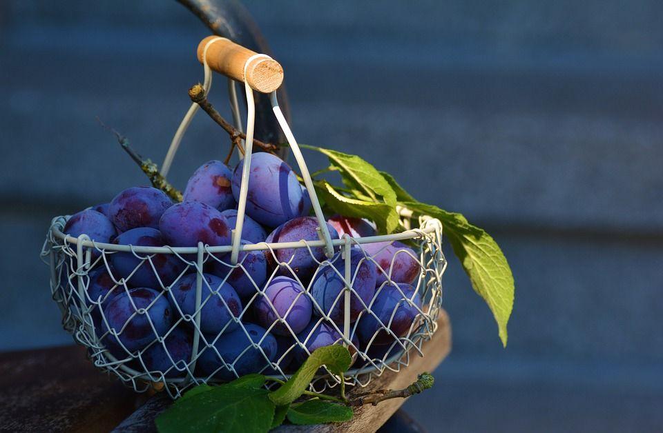 Laxativ natural, fructul plin de vitamine despre care chinezii spun că aduce noroc