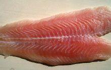 Cel mai periculos tip de pește! Te poate îmbolnăvi GRAV