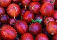 """Fructele care """"topesc"""" grăsimea și combat hipertensiunea și guta. Abundă de vitamine și au puține calorii"""