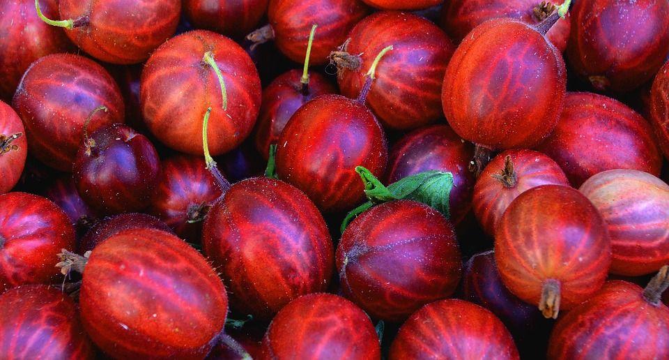 Unul dintre cei mai puternici antioxidanți din lume! Reglează tensiunea, previne diabetul și are de 20 de ori mai multă vitamina C decât portocala