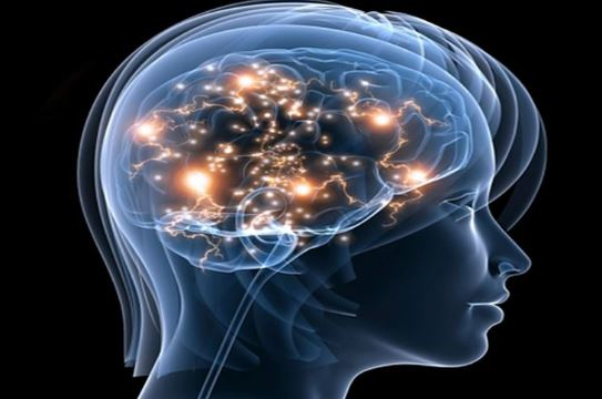 Cea mai bună hrană pentru creier. Previne pierderile de memorie și demența