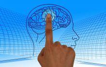 Alimente care mențin creierul în formă și vă feresc de demențe
