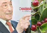 """""""Atenție la aceste plante, pot favoriza apariția cancerului colorectal"""" – Ovidiu Bojor, celebrul academician fitoterapeut"""