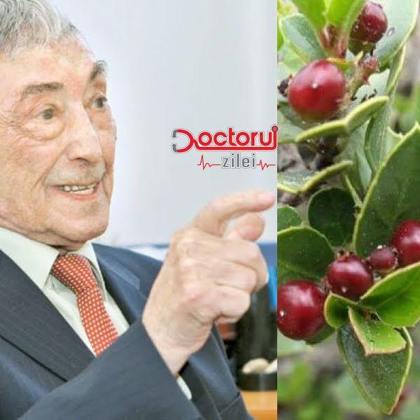 """""""Atenție la aceste plante, pot favoriza apariția cancerului colorectal"""" - Ovidiu Bojor, celebrul academician fitoterapeut"""
