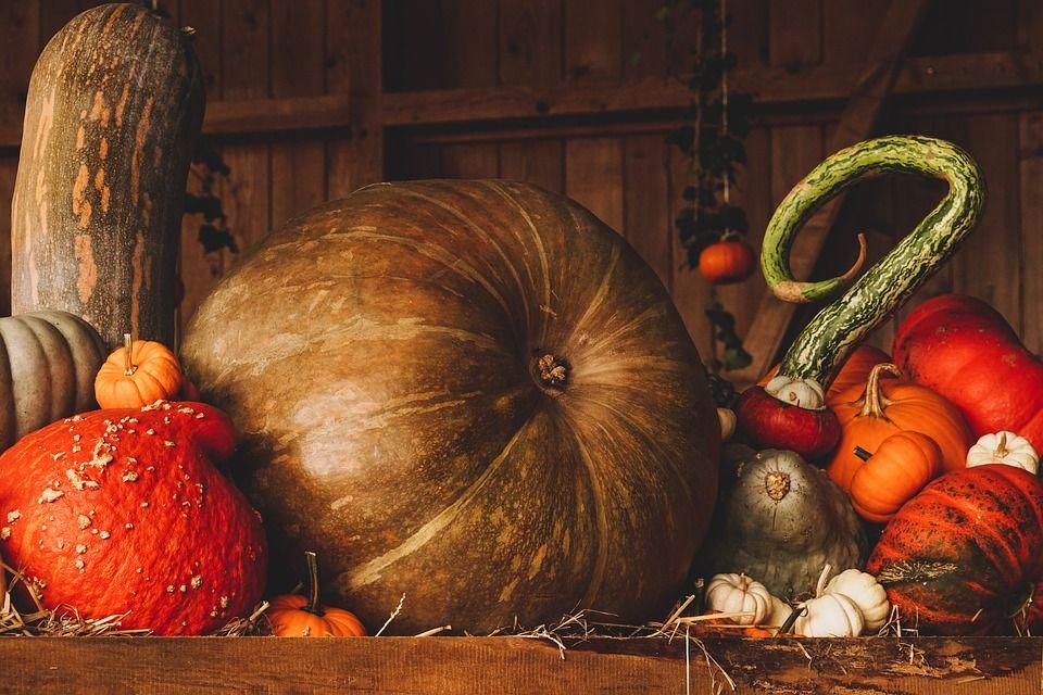 Dovleacul, vedeta toamnei, una dintre legumele cu cel mai scăzut nivel de calorii