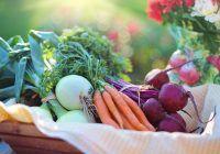 Dieta extrem de importantă în cancerul colorectal