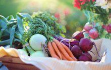Cele mai bune alimente pentru detoxifierea ficatului
