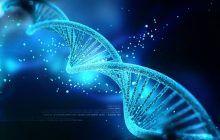 Testarea mutațiilor BRCA: proceduri, recomandări