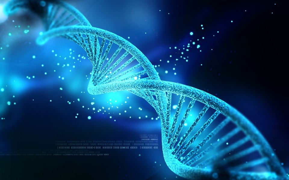 Ai grijă tot timpul ce vorbești: Cuvintele utilizate ne influențează ADN-ul! Explicațiile psihologului