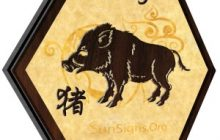 Previziuni cutremurătoare ale celui mai cunoscut prezicător asiatic despre ce va aduce noul an chinezesc al Porcului