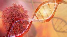 Descoperire uimitoare. Celulele canceroase pot muri fără niciun fel de tratament, în aceste condiții
