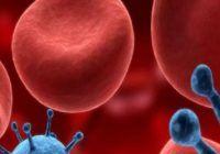 Cinci plante care ajută la curățarea sângelui de toxine