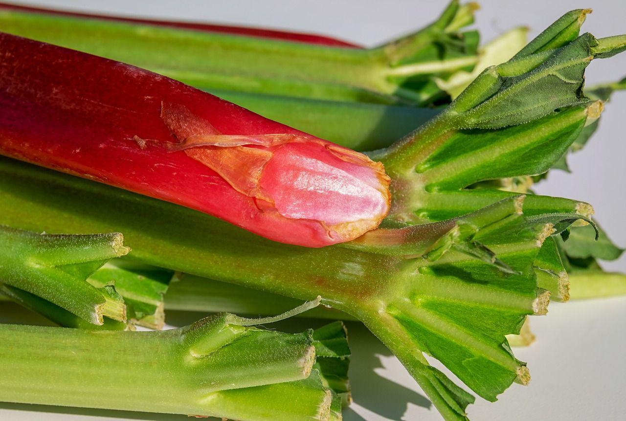 Planta care face minuni pentru ficat