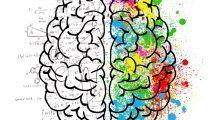 Câți ani are creierul tău? Testul culorii care dezvăluie vârsta ta mentală
