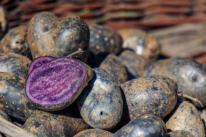 Cartofii violeți și beneficiile lor uimitoare pentru sănătate