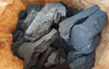 Remediul natural, folosit de mii de ani. Cinci beneficii uimitoare ale cărbunelui activ