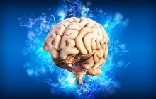 Hrană pentru creier și memorie! Cele mai bune 8 alimente