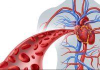Hrana sângelui tău. Ce mâncăm pentru un sânge curat, lipsit de toxine, fără de care bolile au undă verde