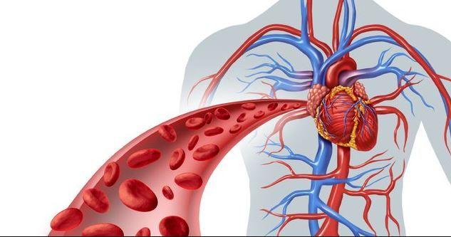 Atenție la aceste simptome! Pot anunța prezența unui cheag de sânge care a ajuns la inimă sau creier