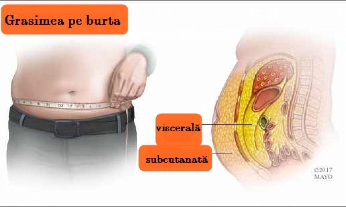 îndepărtați grăsimea din organele interne
