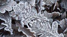Ce se întâmplă cu vremea, în România, începând de azi. Temperaturile vor ajunge la valori neașteptate