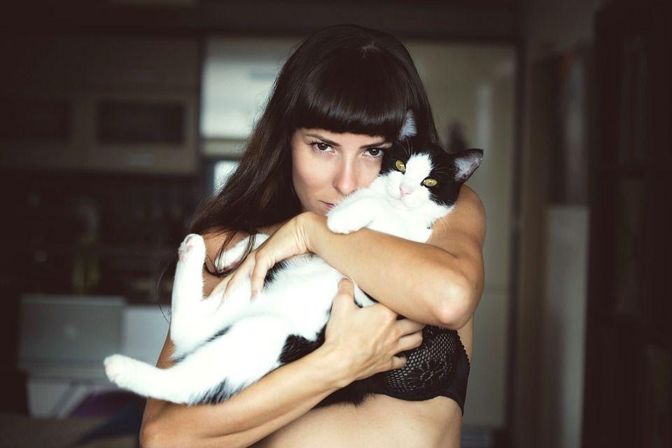 Studiu: Femeile care detin pisici si papagali prezinta un risc mai crescut de cancer