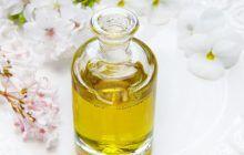 Uleiul care face minuni pentru sănătatea oaselor! Are proprietăți antivirale și antitumorale