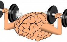 Combustibilul ideal pentru creier. Super-alimentele care previn tulburările de memorie