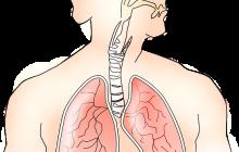 A apărut o nouă boală de plămâni! Ce o cauzează și care sunt semnele de alarmă
