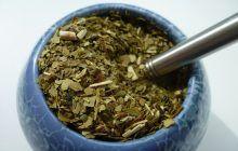 Remediile amare, leacurile ideale în bolile digestive! Dizolvă grăsimea încăpățânată, stimulează bila, combat paraziții