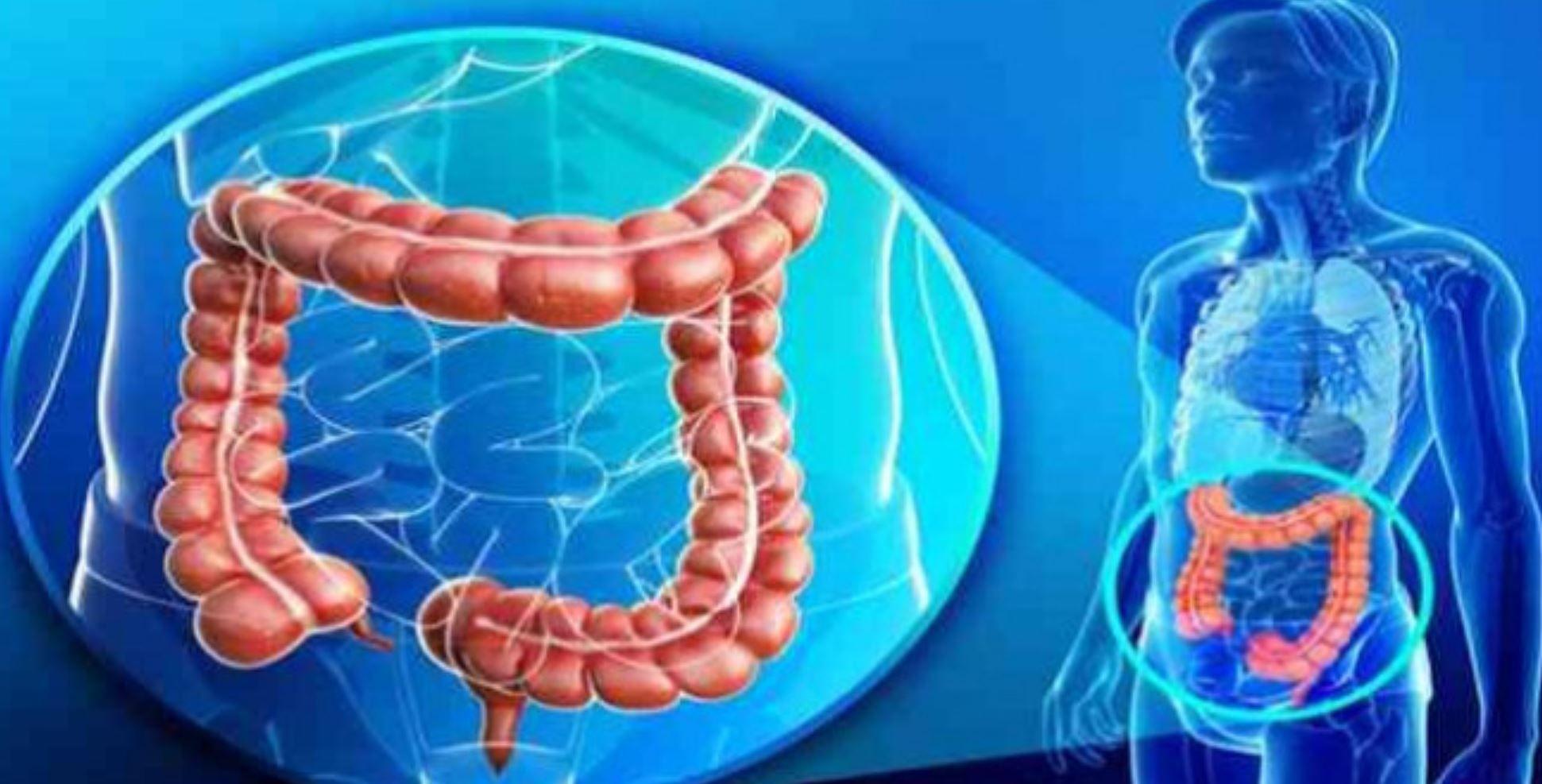 curăță colonul dvs ajută la pierderea în greutate