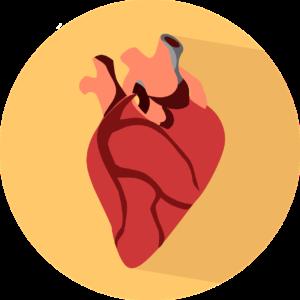 Alimente cu puternic efect cardioprotector. Cine le consumă zilnic nu face boli de inimă