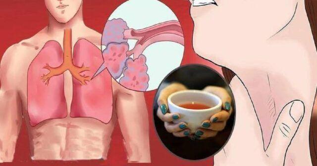 ceai pentru eliminarea mucusului din plamani)